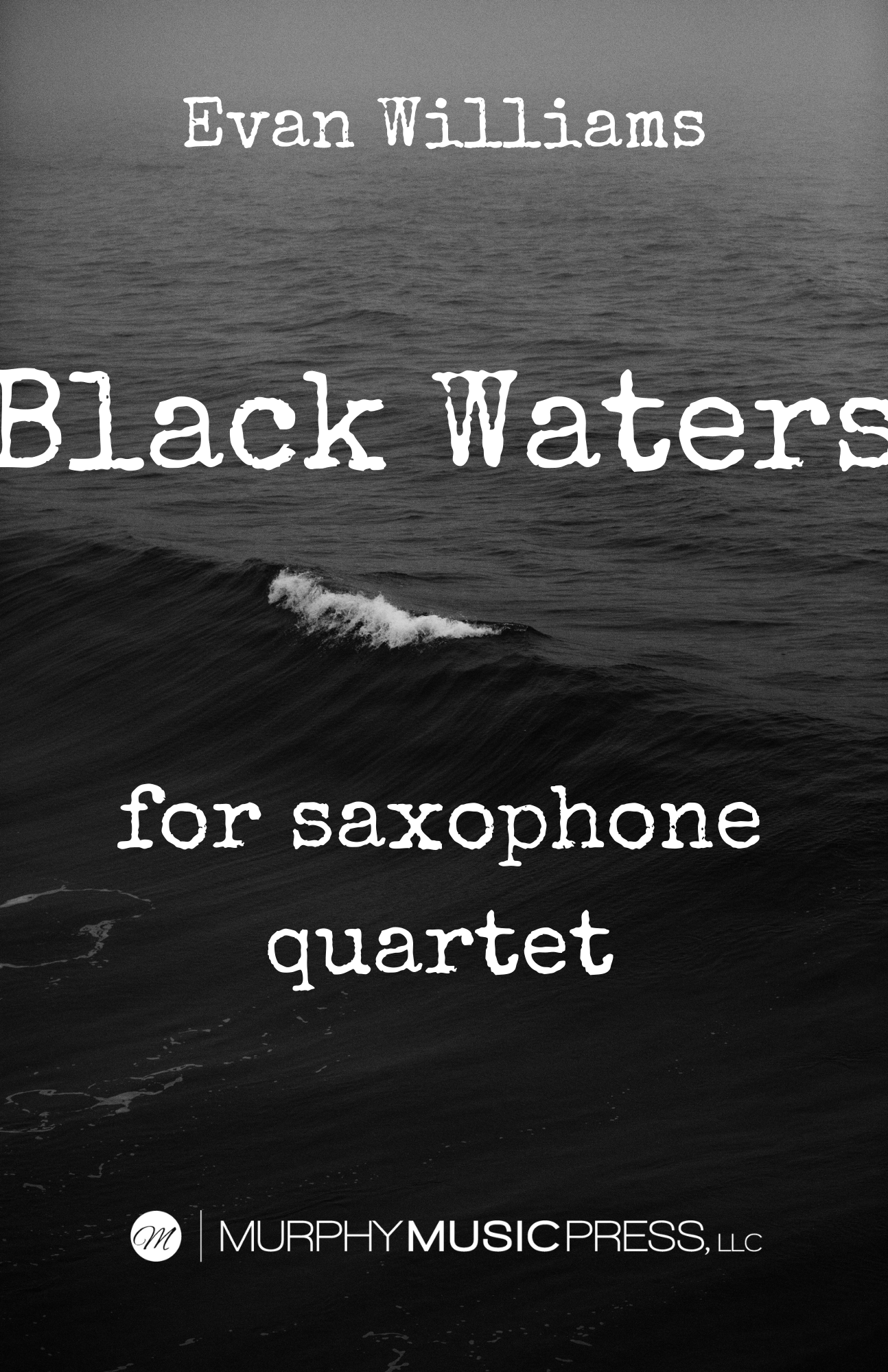 Black Waters by Evan Williams