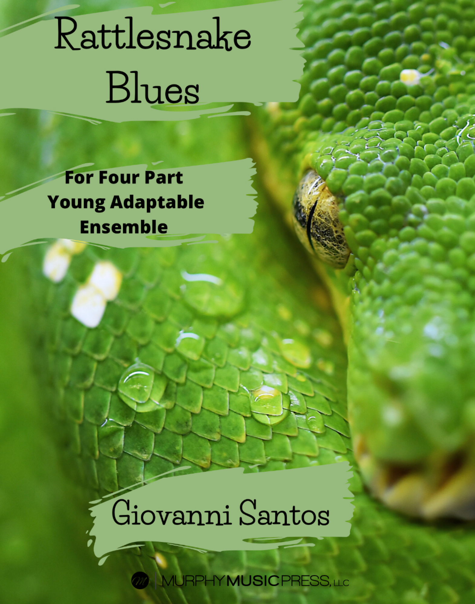 Rattlesnake Blues  by Giovanni Santos