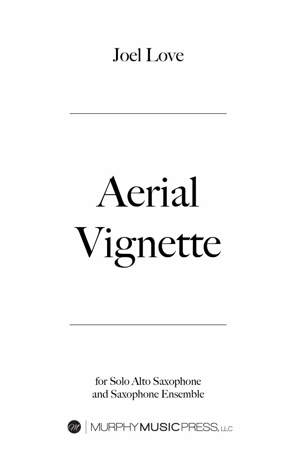 Aerial Vignette  by Joel Love