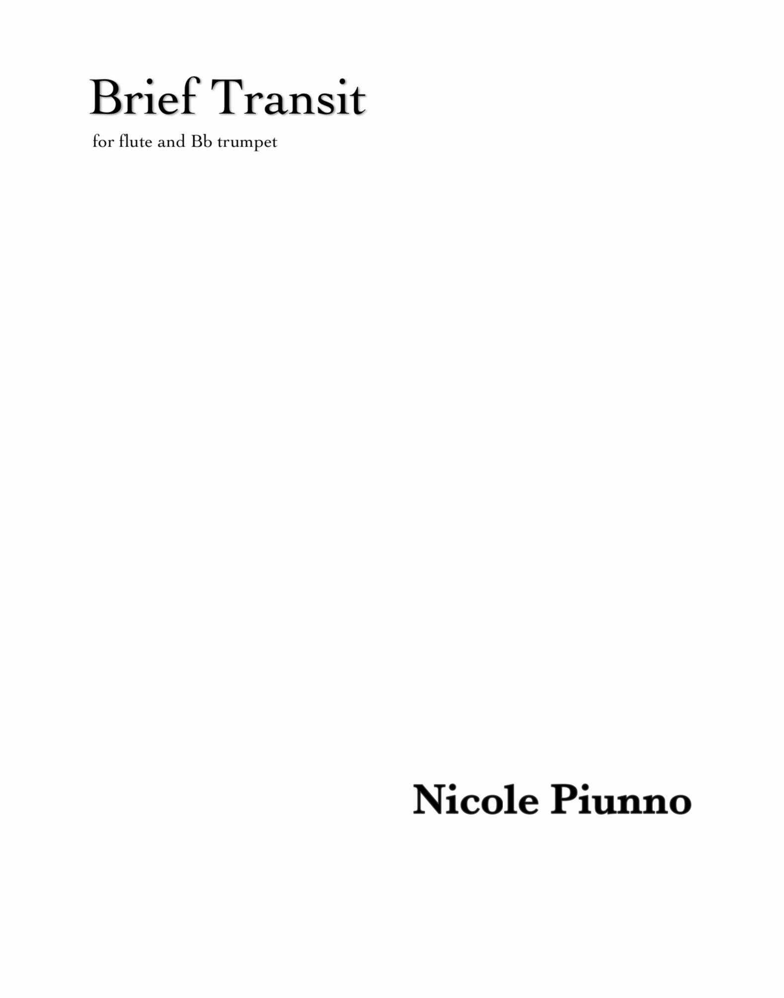 Brief Transit by Nicole Piunno