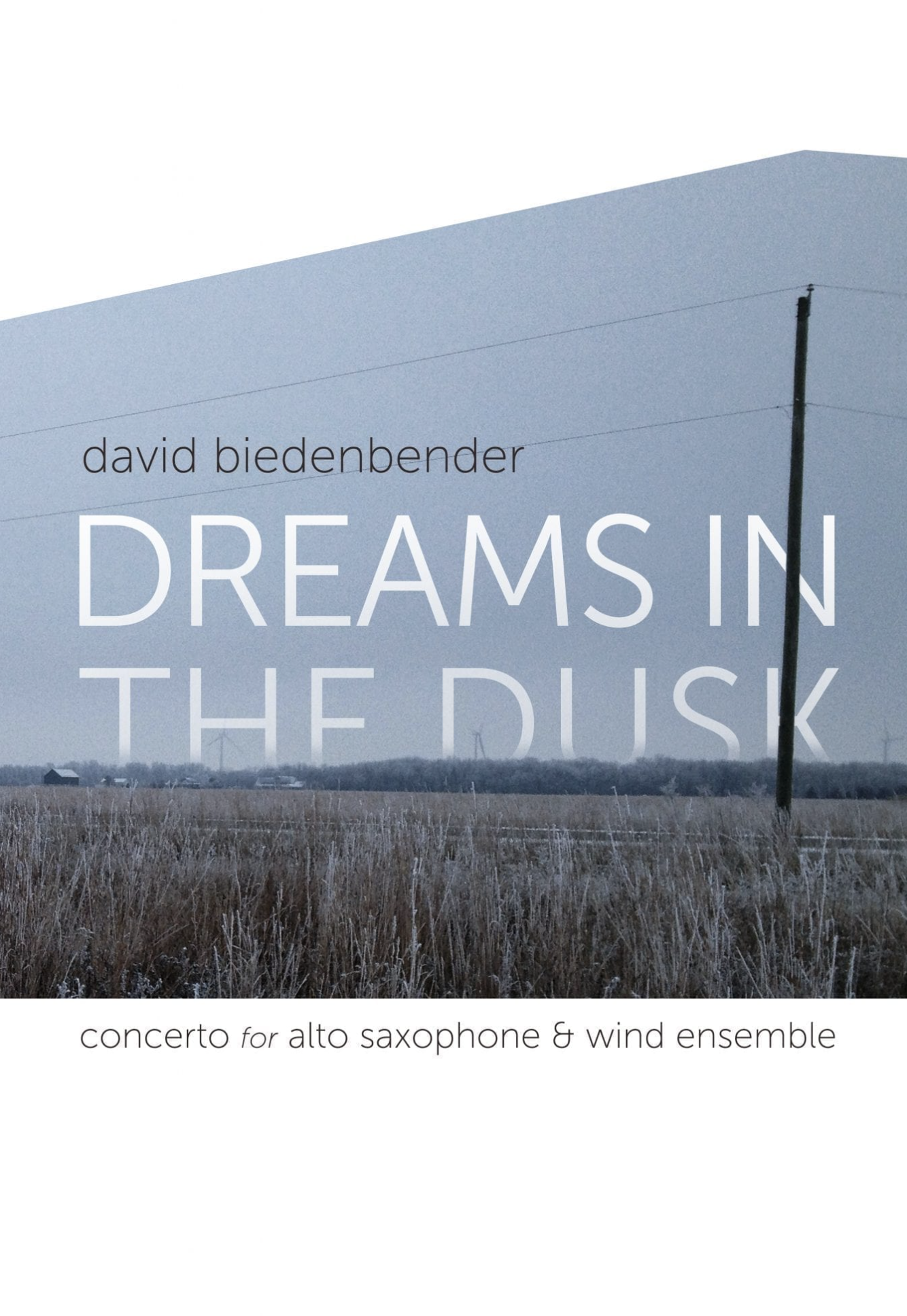 Dreams In The Dusk - Full Concerto For Alto Saxophone And Wind Ensemble by David Biedenbender