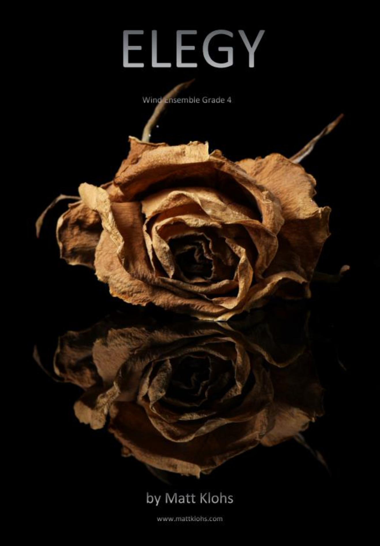 Elegy by Matt Klohs