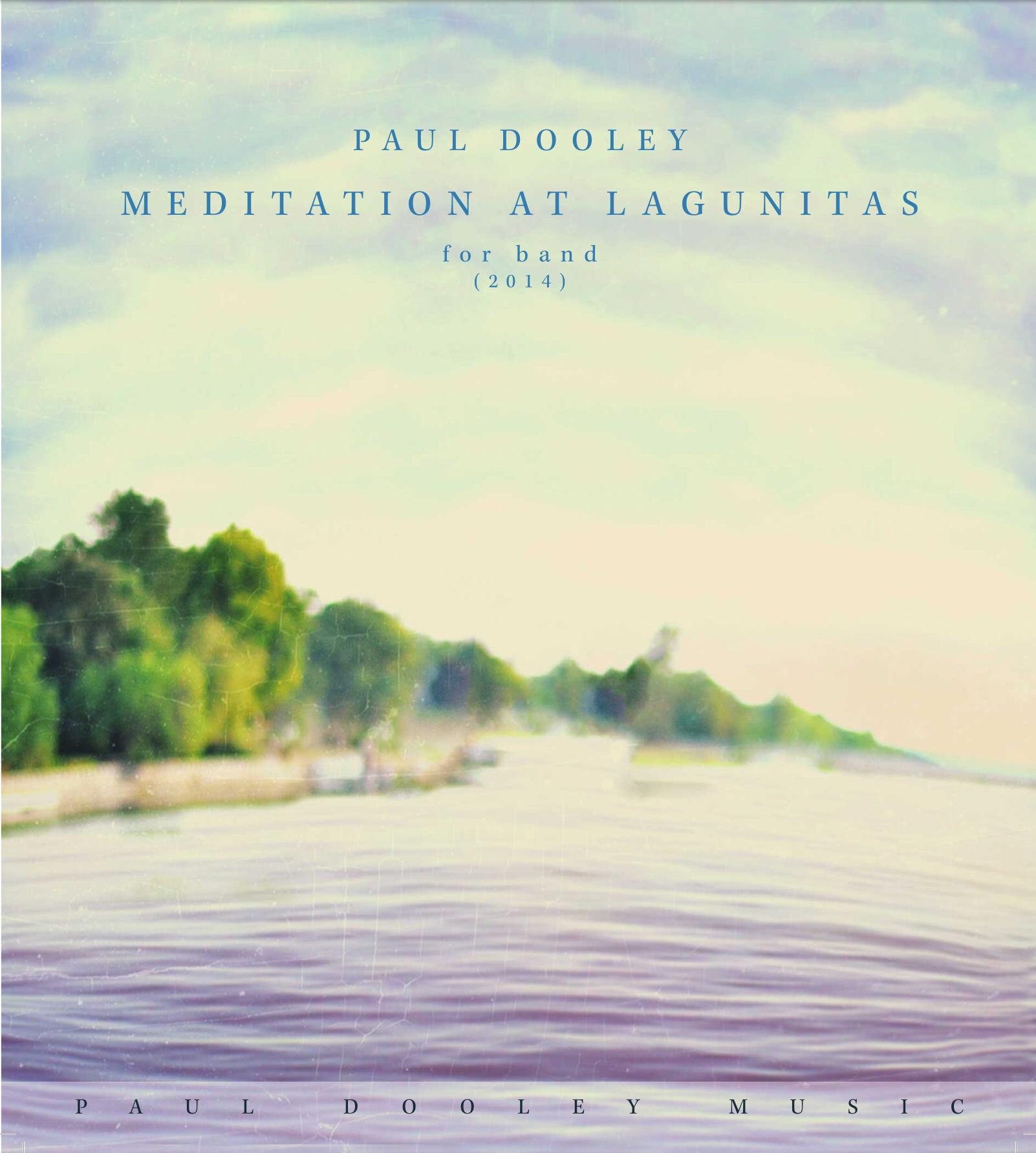 Meditation At Lagunitas  by Paul Dooley