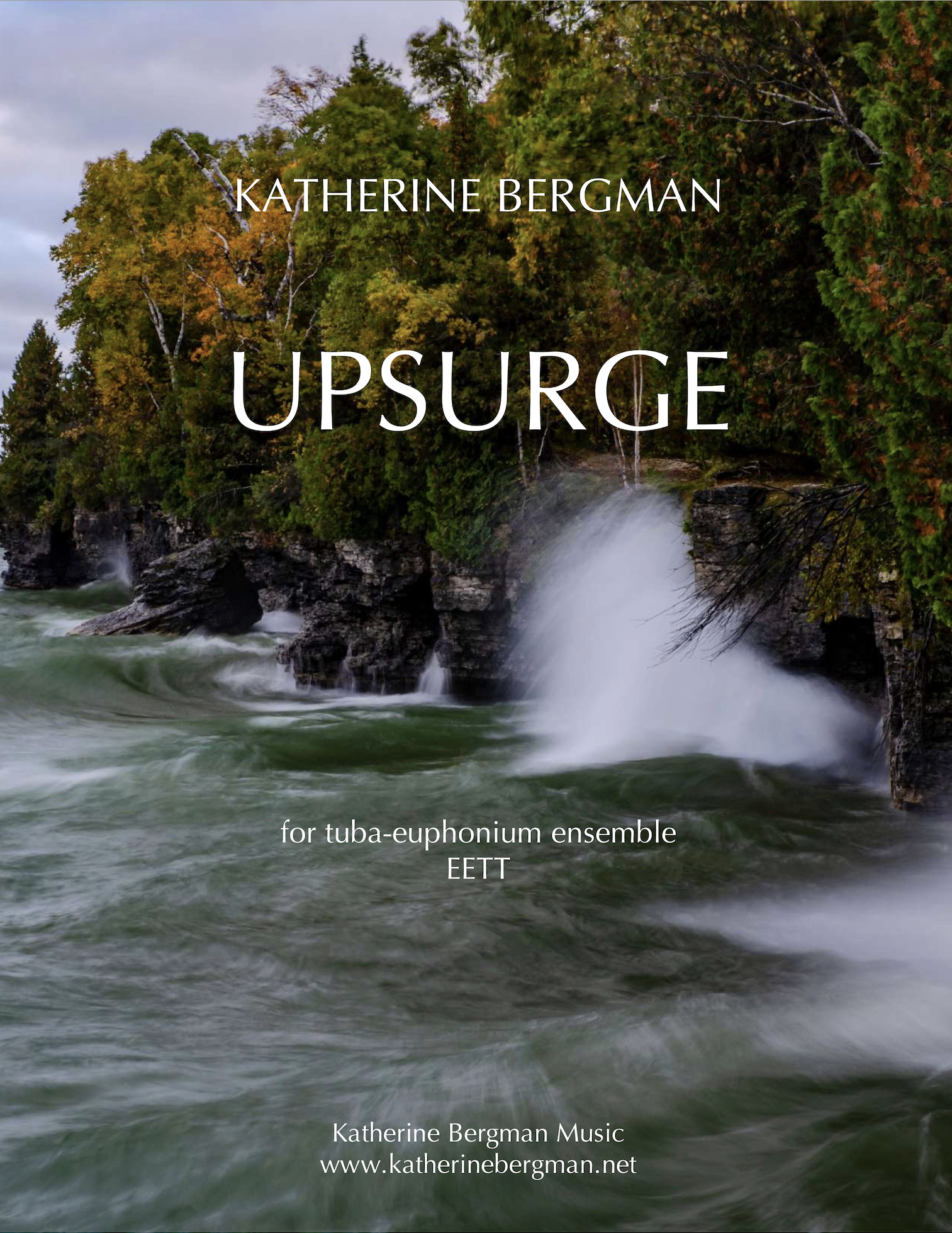 Upsurge by Katherine Bergman